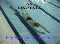 Le forum de la Ludwave